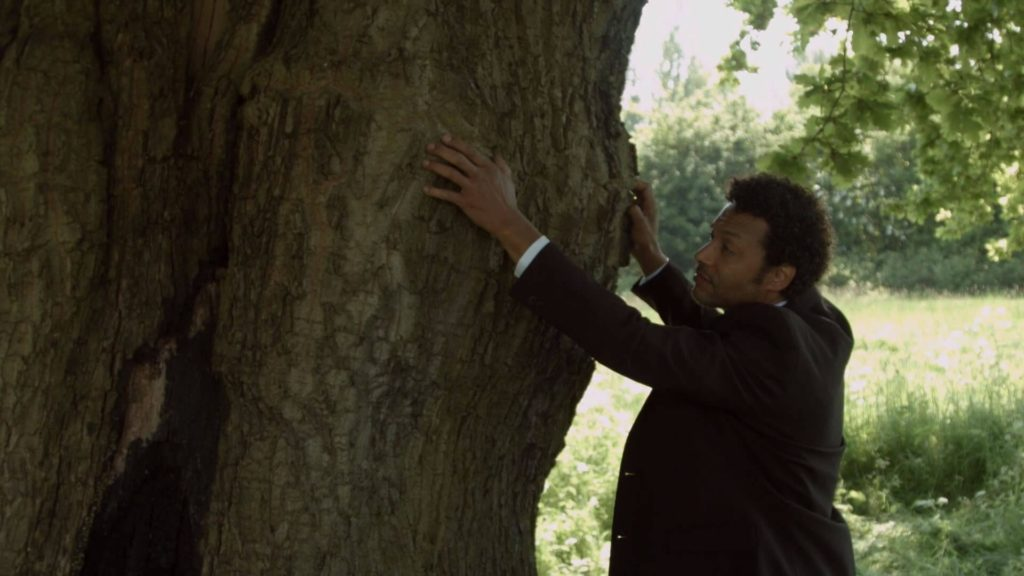 Climbing Trees - Short Film Review - Indie Shorts Mag