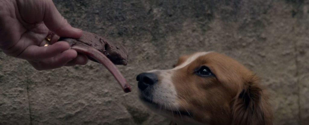 Bone - Short Film Review - Indie Shorts Mag